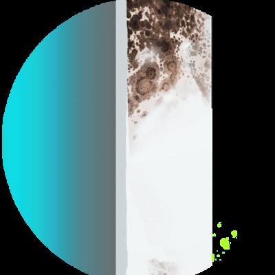 Funktion Wand mit Schimmel